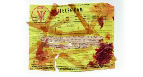 telegram RESIZE