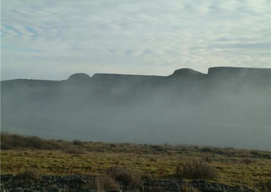 foggy-autumn