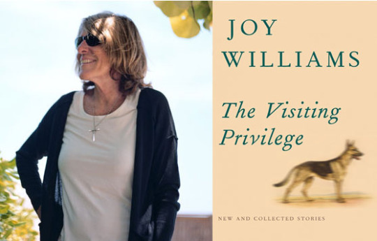 Review: 'The Changeling,' by Joy Williams, introduction by Karen Russell